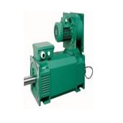 AC vector motors